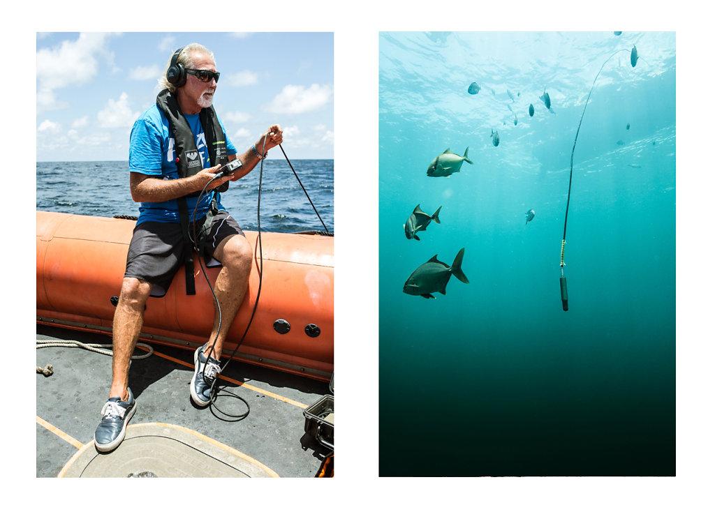 Pierre-BAELEN-Amazon-Reef-31.jpg
