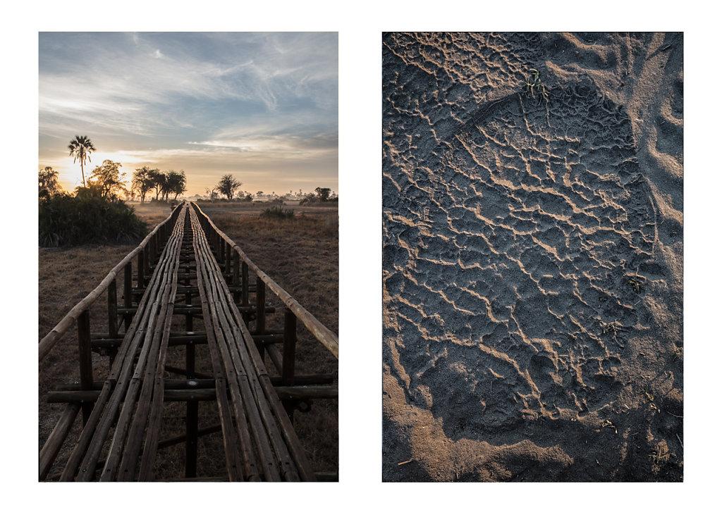 Pierre-BAELEN-Botswana-8.jpg